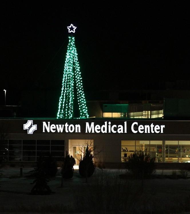Newton Tree Pic